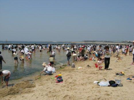 二色の浜海水浴場 潮干狩り