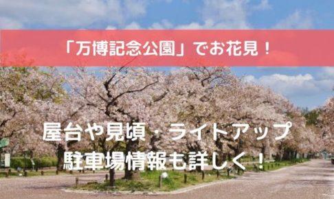 万博公園 桜まつり