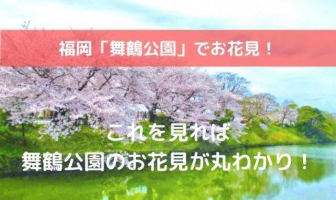 舞鶴公園 お花見