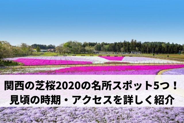 関西 芝桜 名所スポット