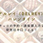 デルレイ バレンタイン限定チョコ 予約 通販